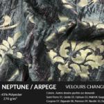 Neptune copie 150x150 - VELOURS BLAFO